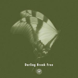 AmPm_DarlingBreakFree-300x300